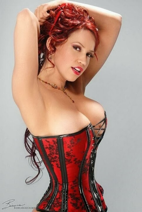 Corset And Bustier Lingerie