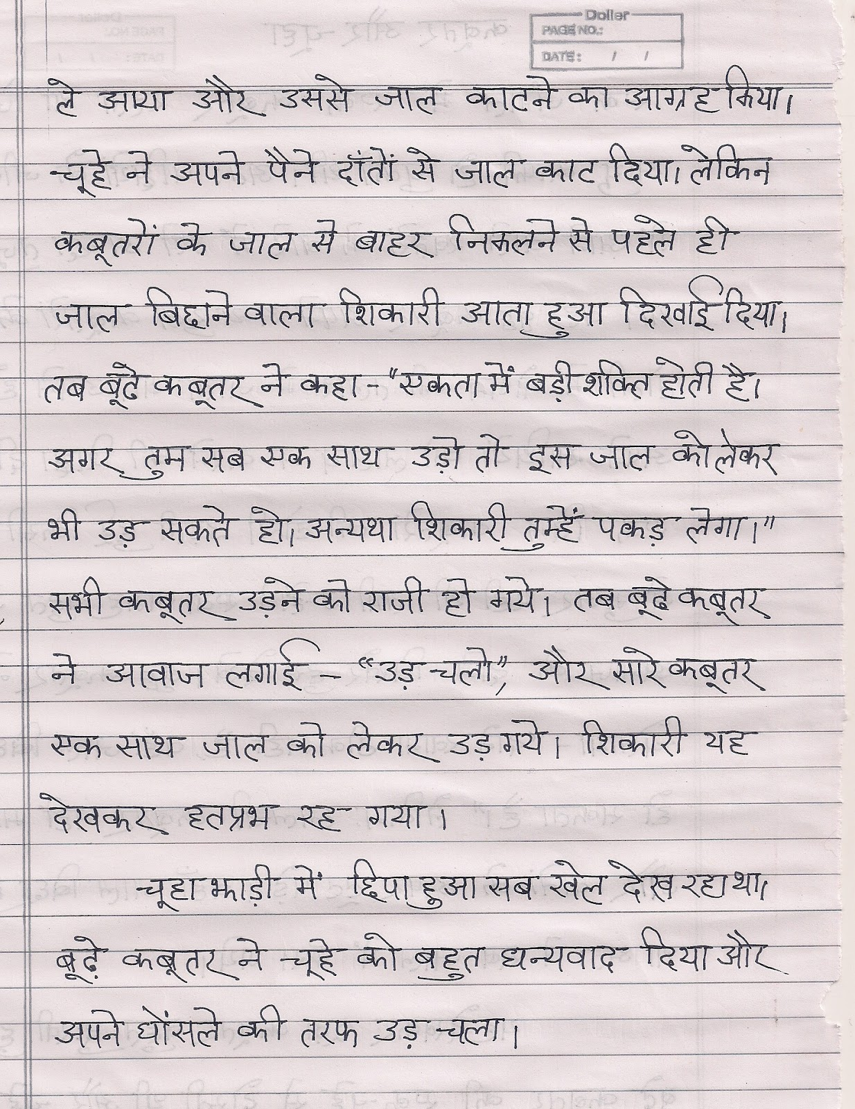 Grandmother Essay In Hindi