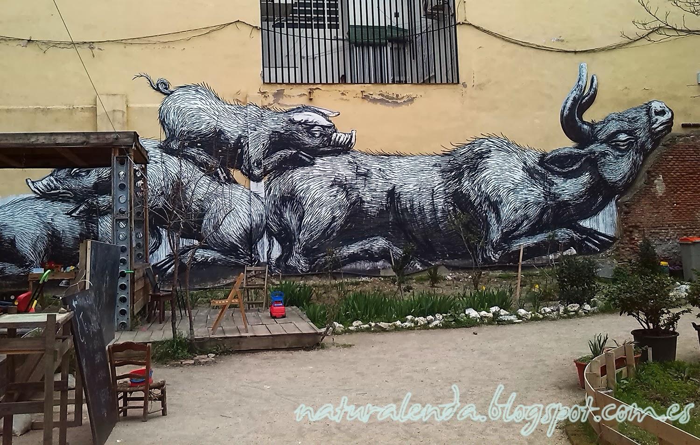 grafiti de cerdos