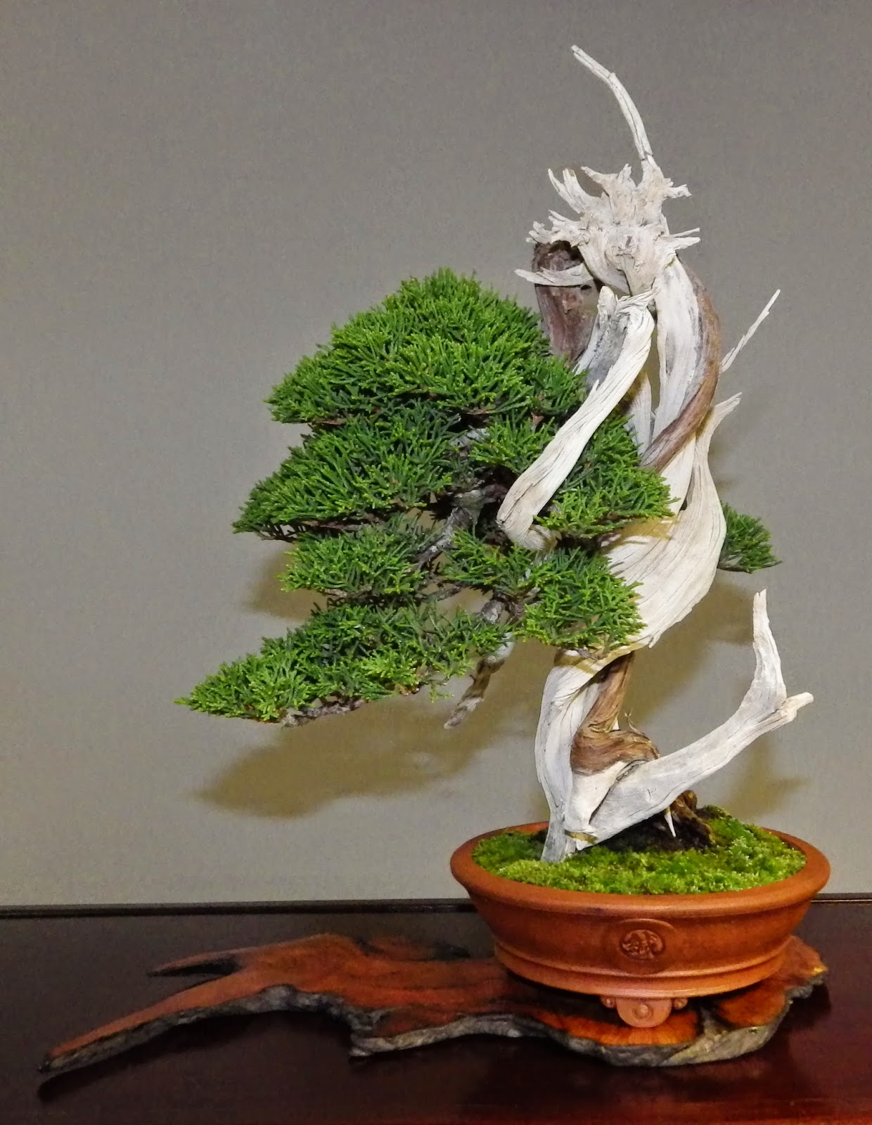 Bespoke Bonsai Stands December 2014
