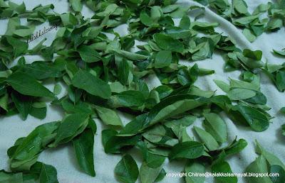 Karuveppilai [ Curry leaf ]