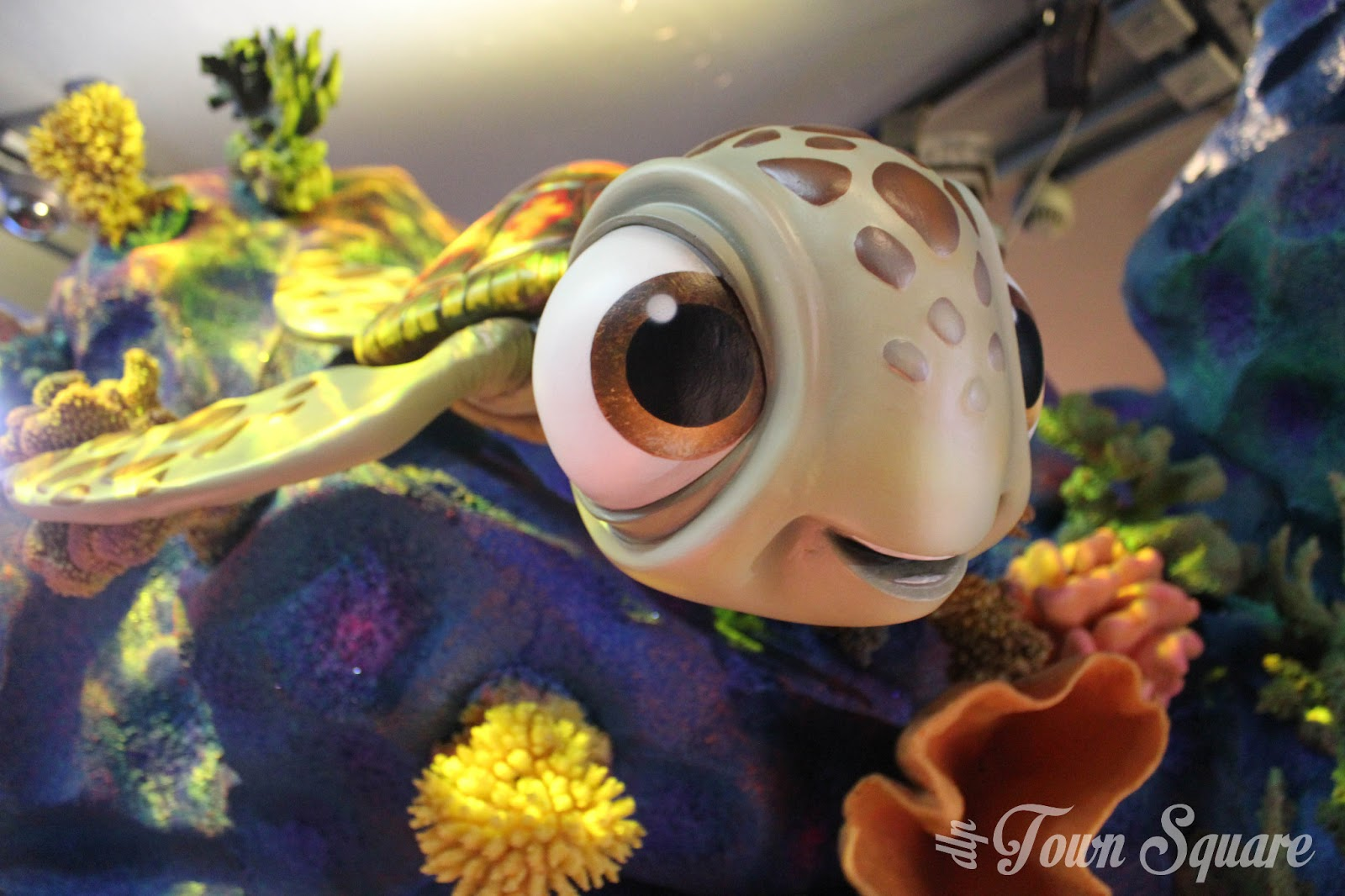 Squirt from Finding Nemo