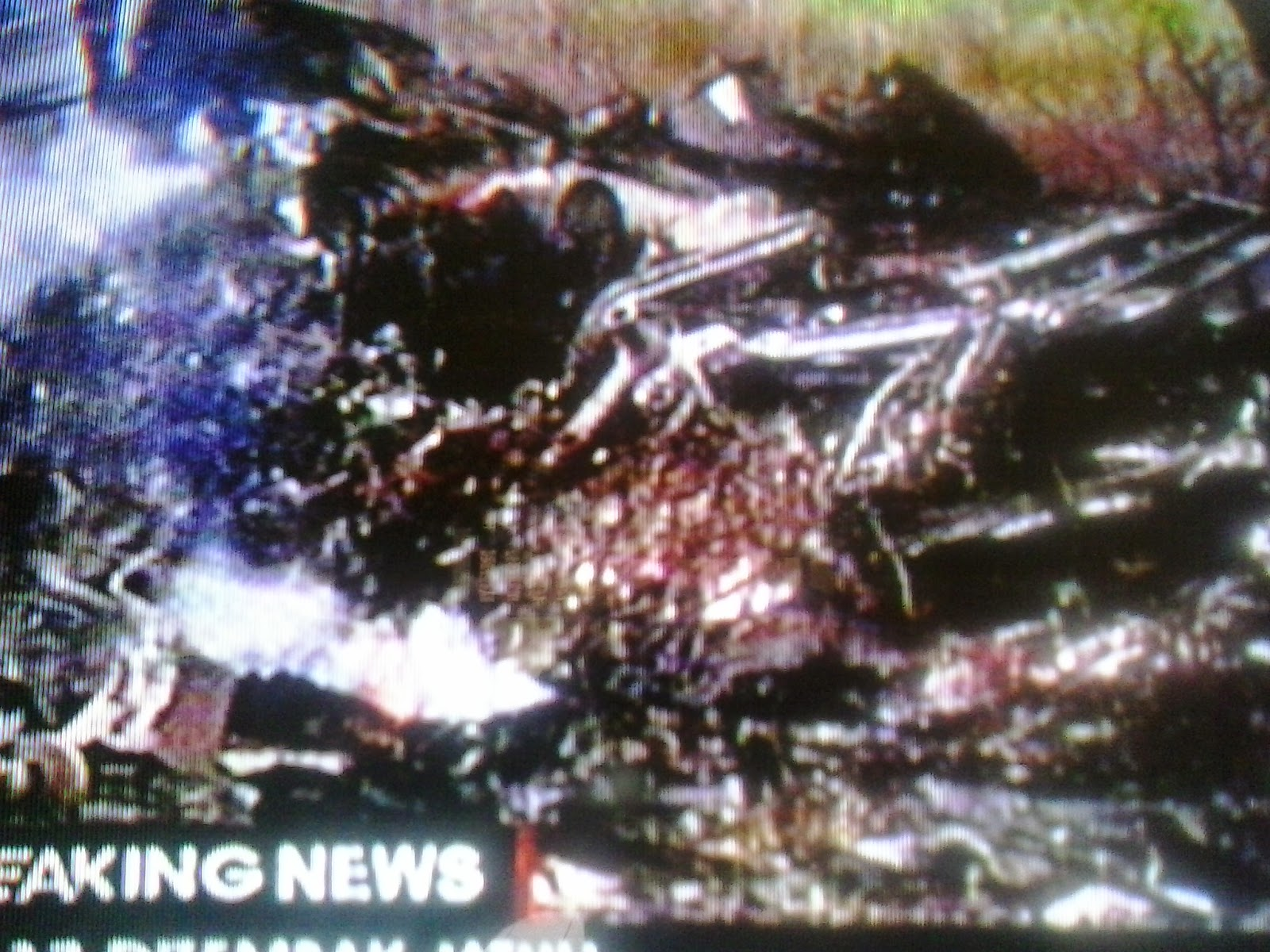 Pesawat Malaysia Airlines MH-17 ditembak jatuh di perbatasan Ukraina - Rusia