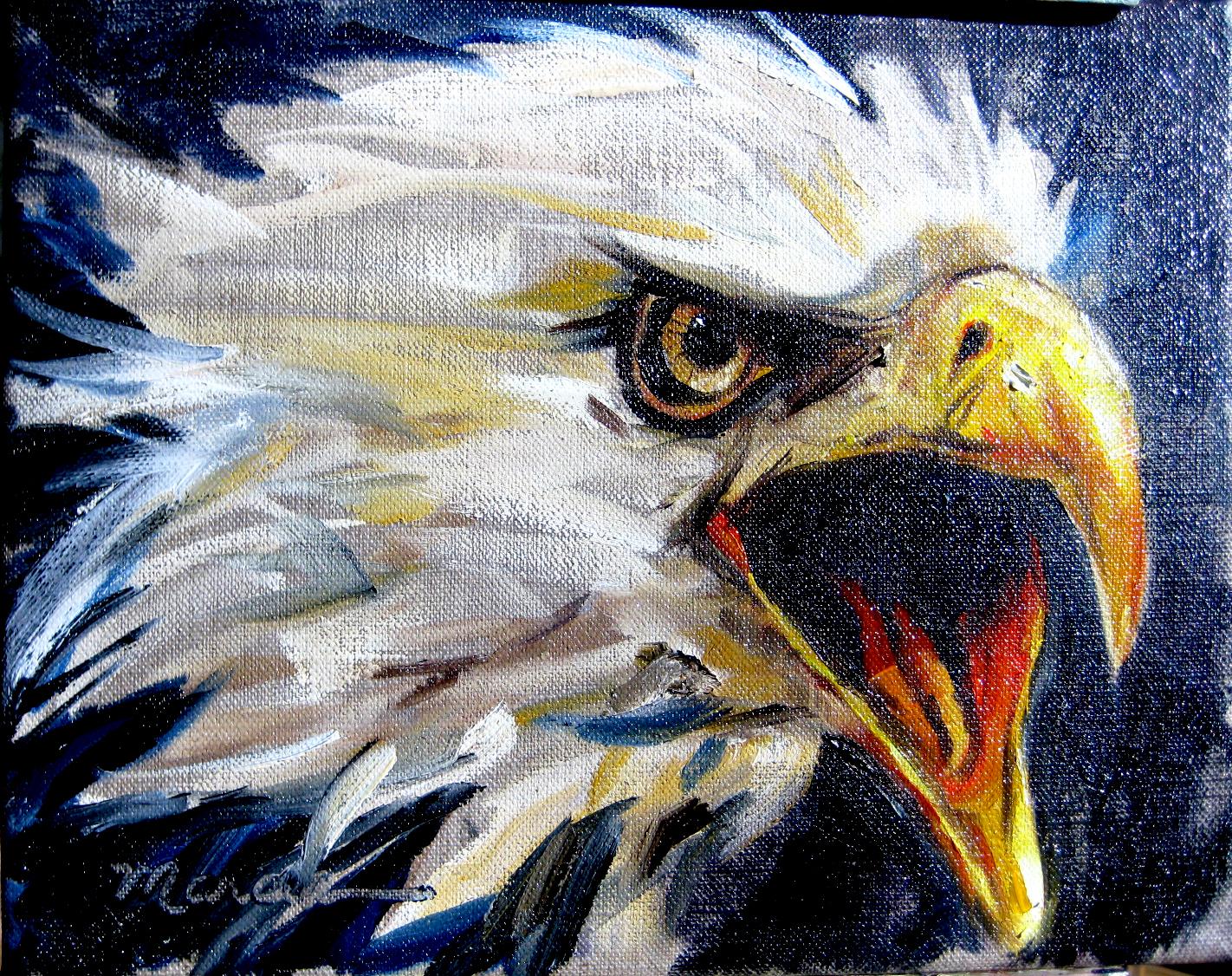 War Eagle net worth salary