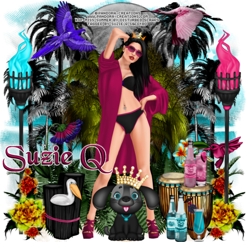 QTags by Suzie Q: CT Timeline and Snags for Disturbed ...