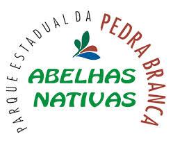 Abelhas do Brasil