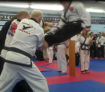 What martial arts means to me essay
