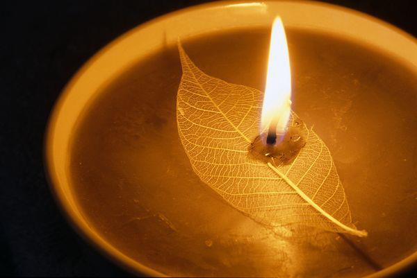 人為不可思議眾生,古今中外研究人之心性,是善是惡,無一定論。人之心性,有如天地,一體兩面,互相對立,互相矛盾,互變互用。物質愈文明,人心愈墮落。人心愈文明,人性愈光輝,人心與人性,有如天地陰陽,質量互變,動靜互用,同生共存。人心為後天之心,人因爭生存,爭名利地位,爭財富權勢,無所不用其極。人與人之間,國與國之間,分別、對立、敵視、抗爭,故人心本惡。人性來自天性,無生無滅,無善無惡,無惡便是善。故「人性本善。人心本惡」。人性本善,已有定論,如何導正人心融入人性之中,另心性合一,除惡務盡,心性一如,性命一如,心身一如,清淨無染,善慧圓滿,佛智具足,一世圓證真如佛身,化娑婆為淨土,是為宗教立教之義,亦為人人當務之急。佛道聖教,明師正法,可令人心轉化為禪心,禪心即佛心,佛心即聖人之心,乃真善美之心。得禪心者,心無偏見,無斷見,無邪見,無無明見,無分別心,無分別相,無對立,無敵視,無不平等,無抗爭,乃至無我執,無法執,無惑業,無妄念,身心清淨無染,一切解脫,一切自由自在,入於世,住於世,隨緣不變,不變隨緣。攝取眾生,莊嚴眾生。攝取佛國,莊嚴佛國。禪心世界,娑婆即淨土,眾生即佛陀,基督即佛,佛即基督,性海無波,一心圓法界,法界本圓空,圓空空寂寂,寂寂空空空。一切法界為眾生所共有,一切萬物為眾生所共享,地無南北東西,人無黃白棕黑,教無五教之分別心,唯有五教之共性。此一共性,締造天下大同,開世界萬世太平。十方極樂,同住人心佛性,自在禪心之中。