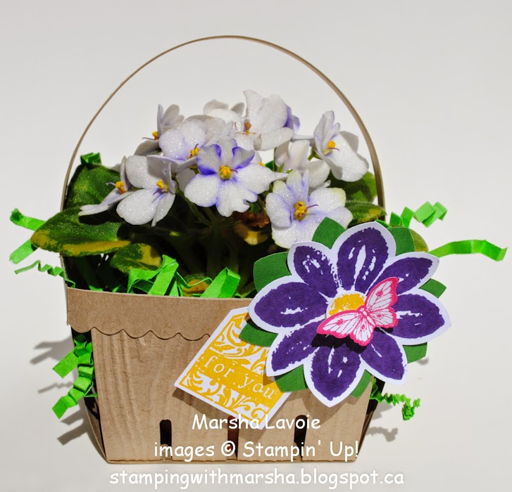 berry basket stampin up