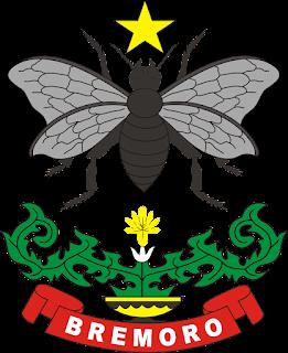 Logo Yonif 413 Bremoro