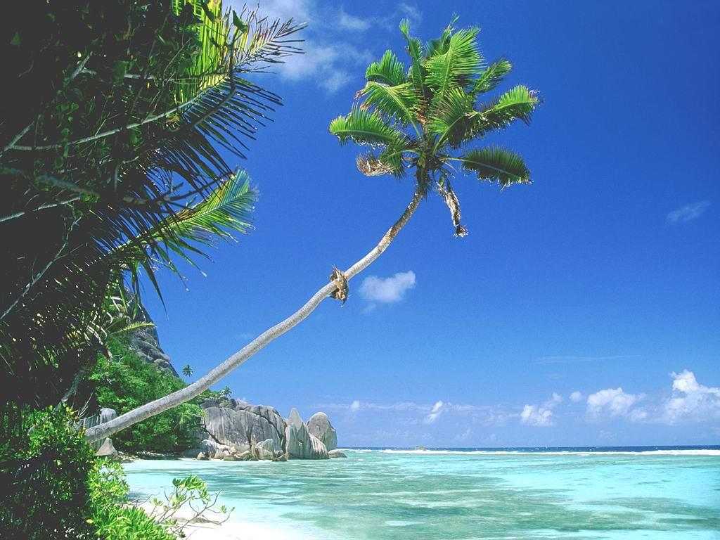 Goa+Beach.jpg