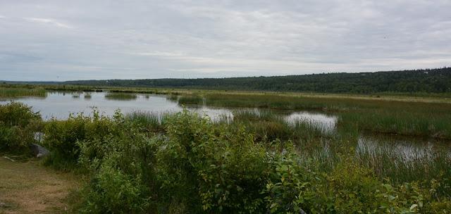 Lake near Palmer