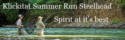 SUMMER RUN STEELHEAD