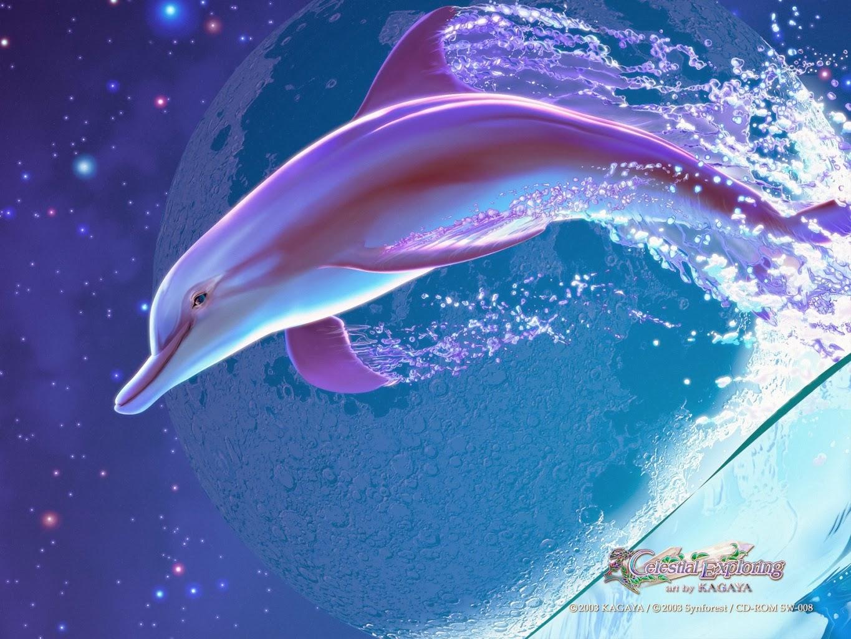 Kagaya Yutaka • Fondo de Pantalla • estrellas, luna, delfín