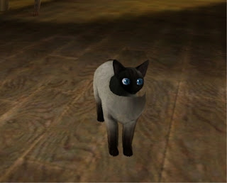 Sims  Cats And Dogs Bug List