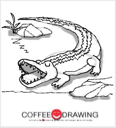 how to draw a cartoon crocodile step by step
