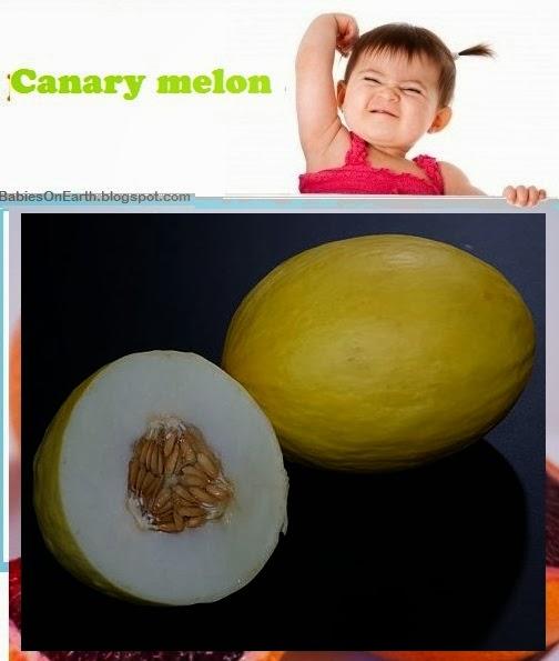 Baby Canary Melon