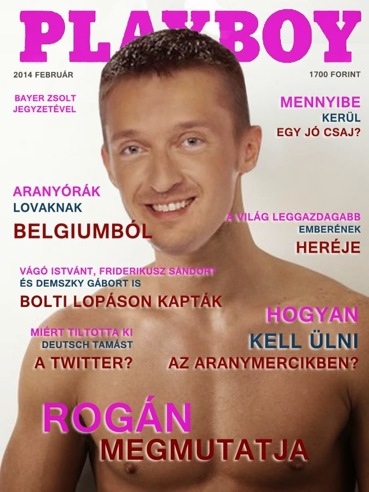 Rogán Antal, Playboy