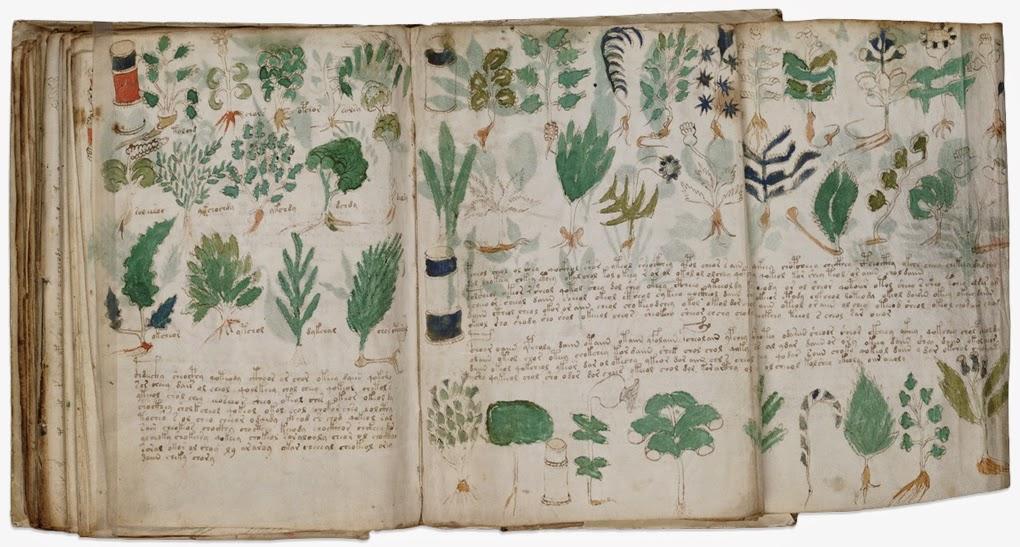 Ilustraciones Manuscrito Voynich