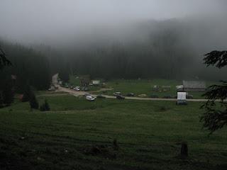Poiana Glavoi Muntii Apuseni Romania
