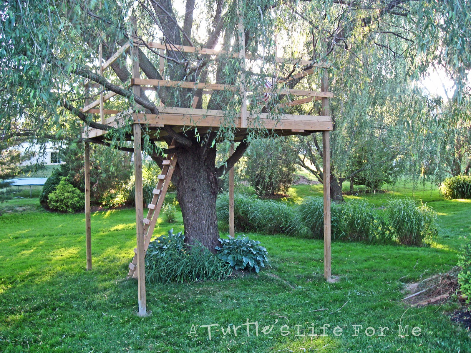tree fort with a swing a turtle 39 s life for me