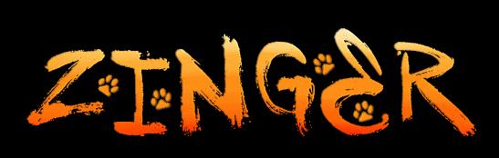 zinger ● blogi