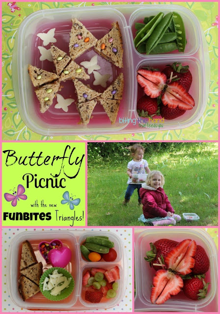 Preschool and toddler lunch picnic!
