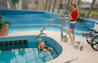Handi-Move Pool Lift Image