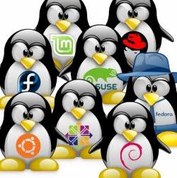scopi utili linux