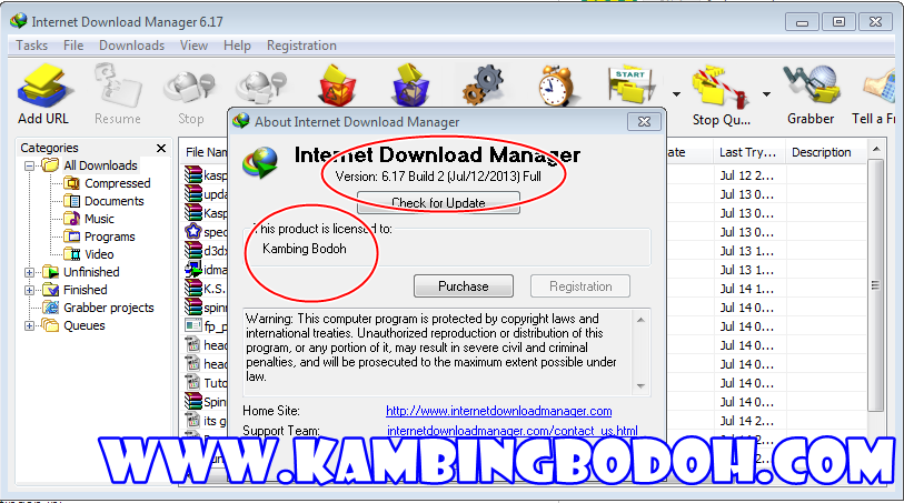 Free Download IDM 6.17 Build 2 Full Patch + Serial Number