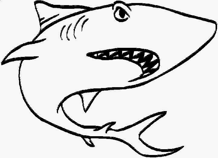 Coloring pictures of sharks free coloring pictures for Coloring pages shark
