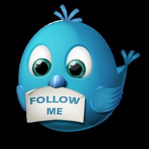 pajaro twitter mensaje follow me