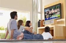 Programas Emitidos en Televisión