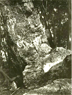 Rocher du sanctuaire Ishii 石井神社の巨岩