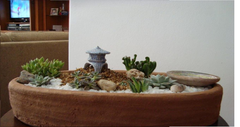 Mini Jardim  Decoração Viva Mini jardim japonês com bebedouro de