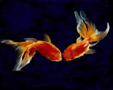 O signo de Peixes