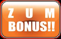 Mein Bonus