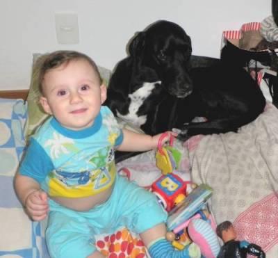 As Crianças e os Animais.