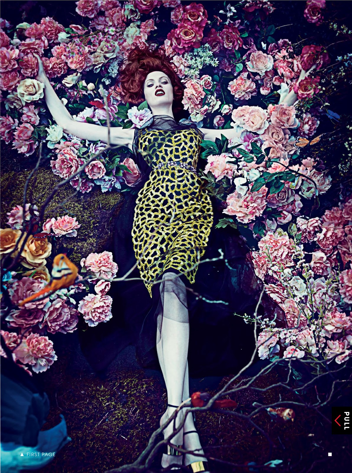 hothouse flowers carolyn murphy and karen elson by steven klein for us vogue