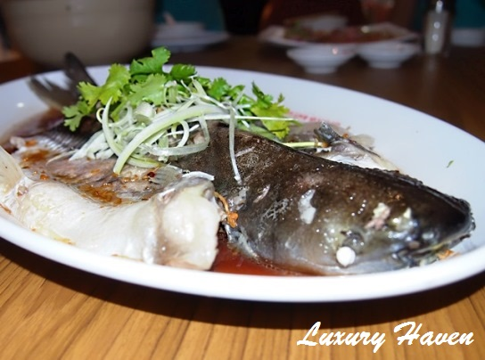orchid live seafood restaurant steamed batin fish