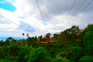 Zipline in Eco-Adventure Trail Tagaytay
