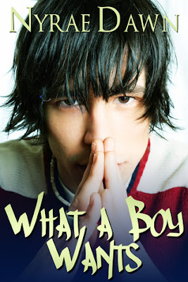 Book Review and Author Interview: What a Boy Wants by Nyrae Dawn!