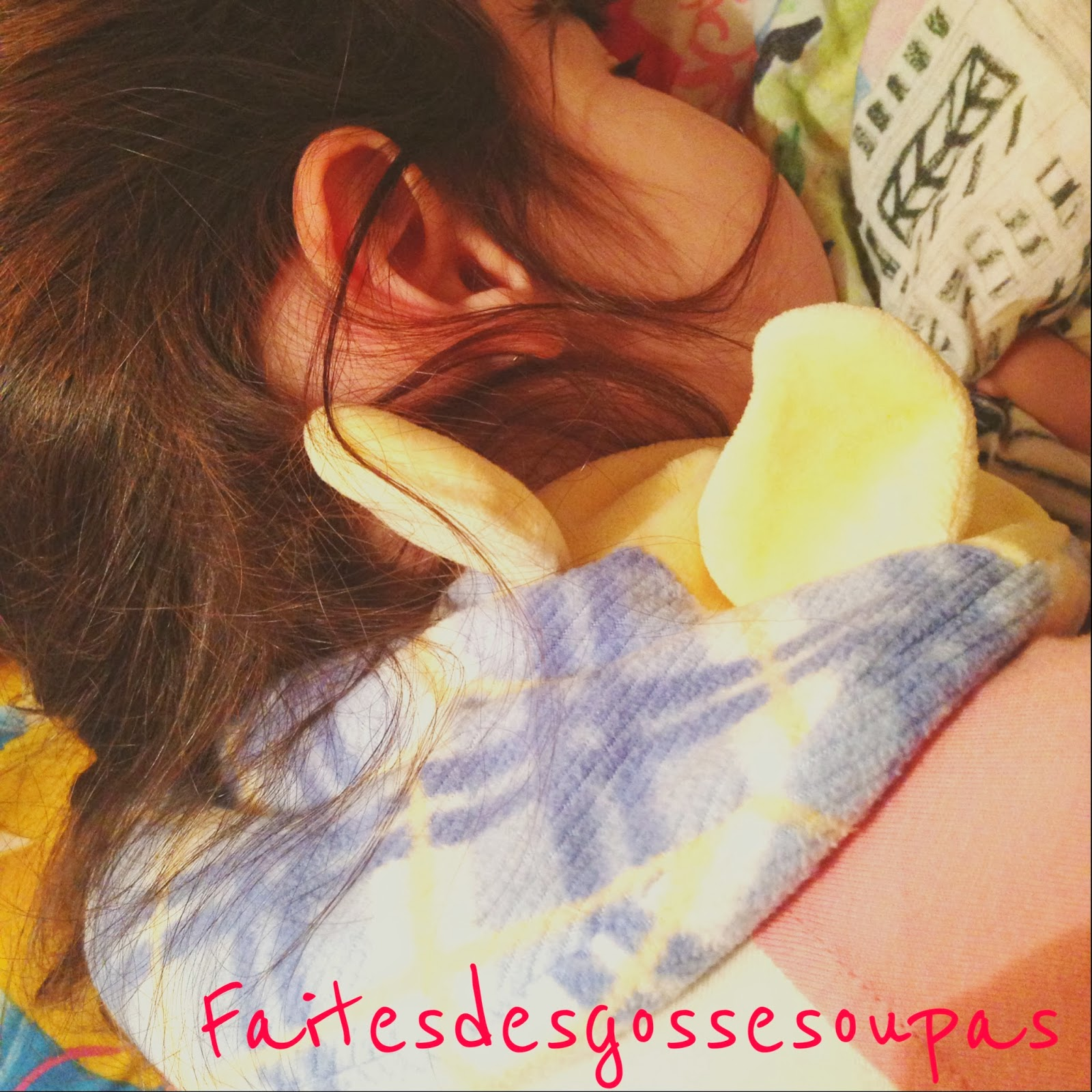 http://www.faitesdesgossesoupas.blogspot.fr