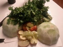 Garden Food to Juice