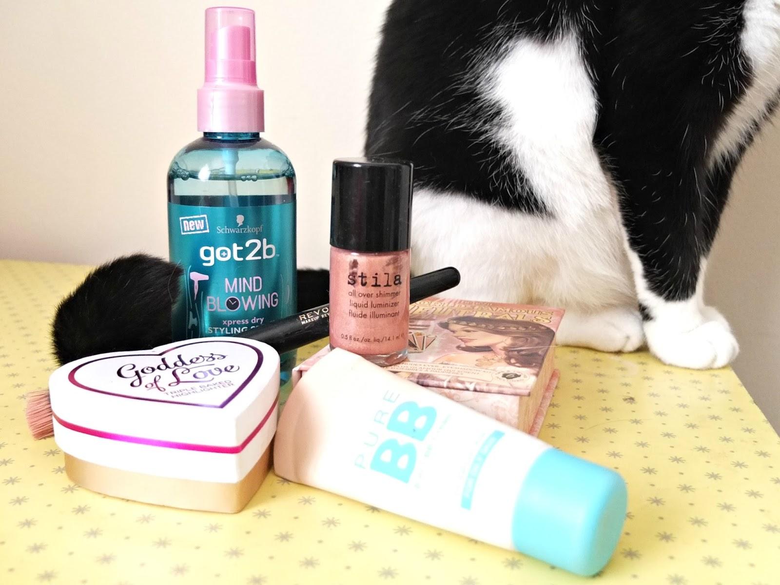 hello terri lowe beauty blog