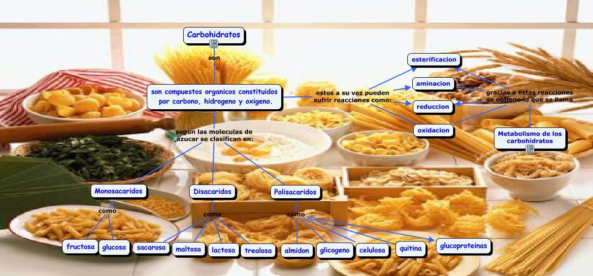 Carboh dratos - Que alimentos contienen carbohidratos ...