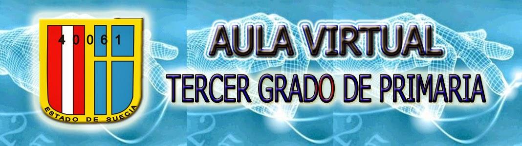 AULA VIRTUAL_CEPP_TERCERO_PRIMARIA1_DOCENTE_CARLOS_PALACIOS_PINTO