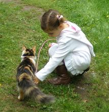 Tässä linkki uuteen blogiini Kissankulmaan