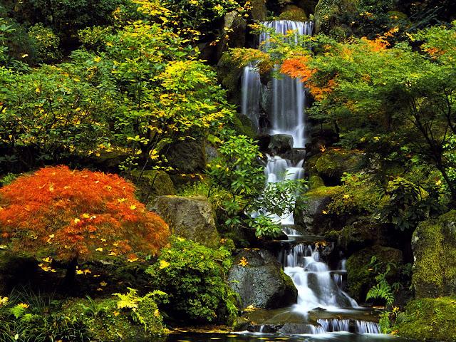 Japanese+Garden%2C+Portland%2C+Oregon.jpg (1600×1200)