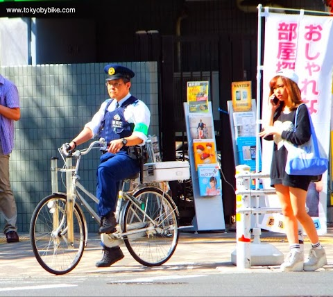 The Success of Everyday Cycling in Japan Defies Logic